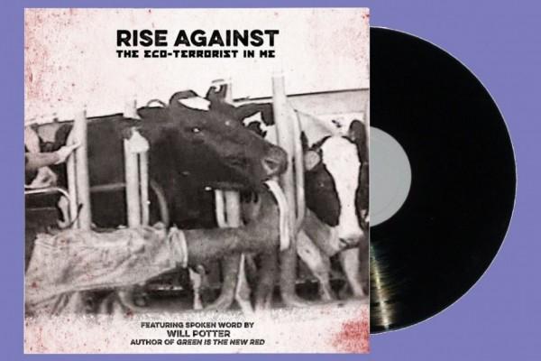 rise-against