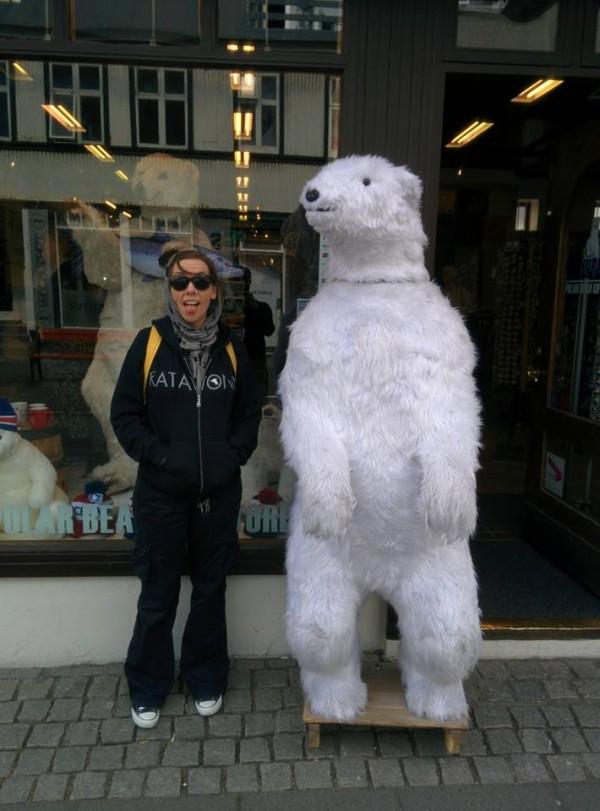 Laura - polar bear